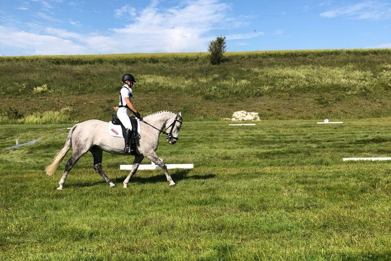 Dressage Barbury 2019